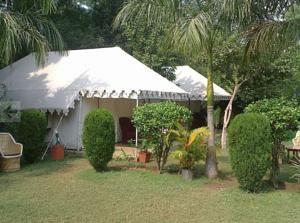 Sher Camp Hotel Ranthambore, India
