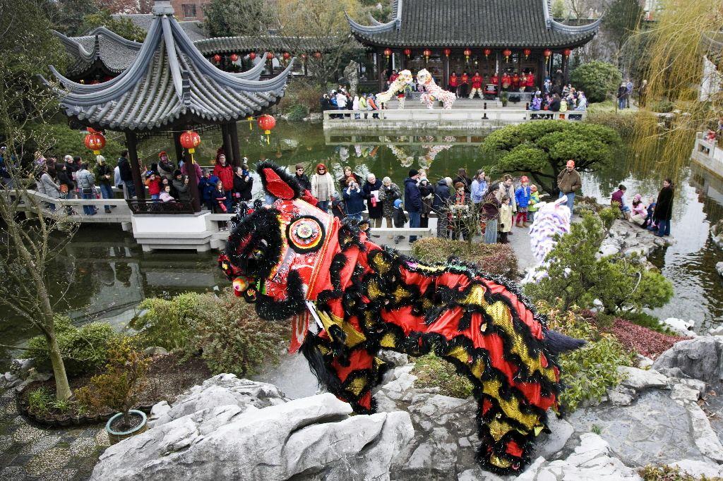 Prosperity? Lion dance might help Rose garden portland