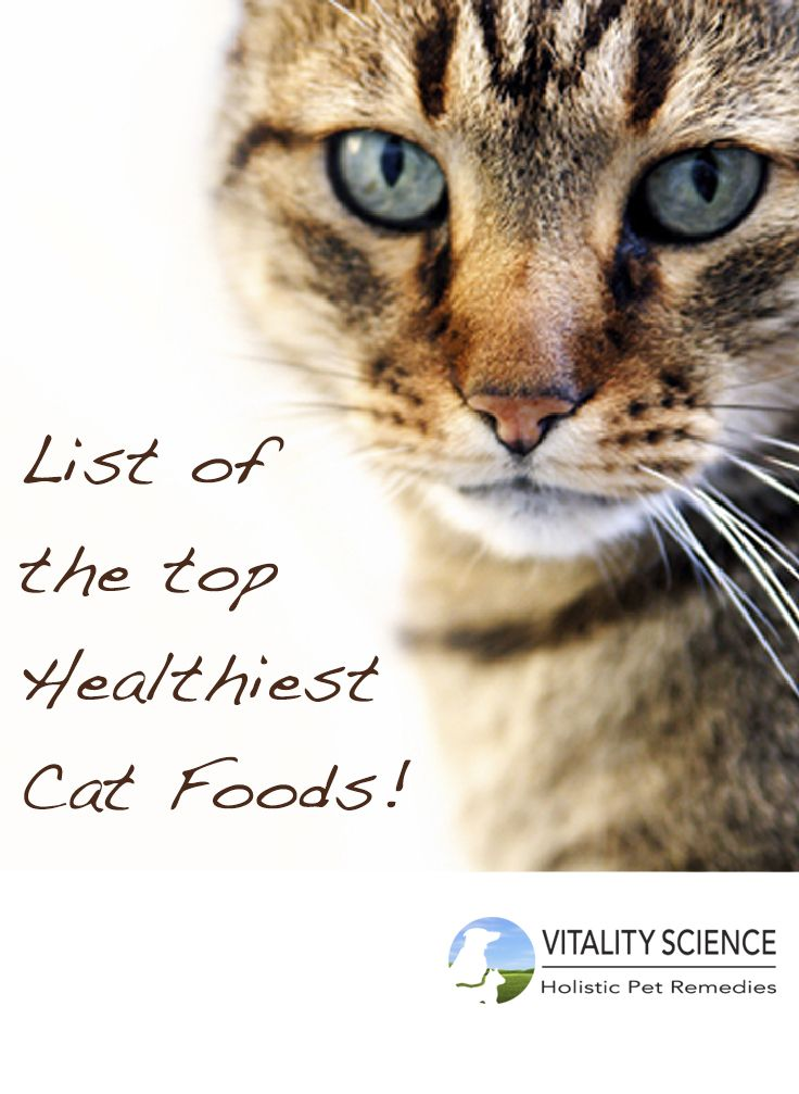Print This Out And Use It When Shopping For Cat Food A Healthy Diet Cannot Be Overstated When It Comes To Your Animal Pet Day Animal Lover National Pet Day