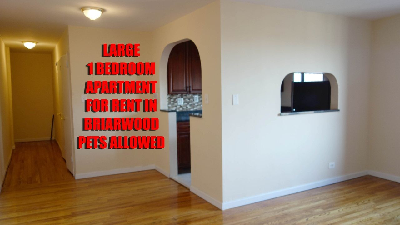 Pet Friendly All New Big 1 Bedroom Apartment For Rent In Briarwood Qu 1 Bedroom Apartment Briarwood Apartments For Rent