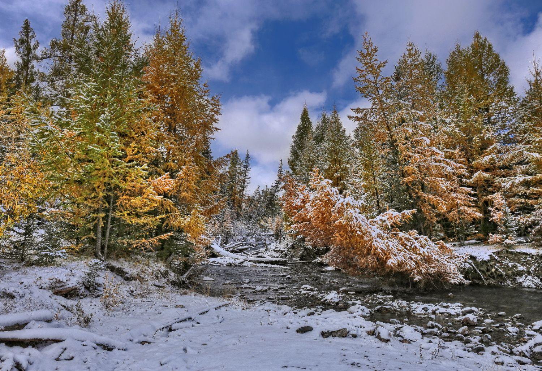 фото природа осень зима быть