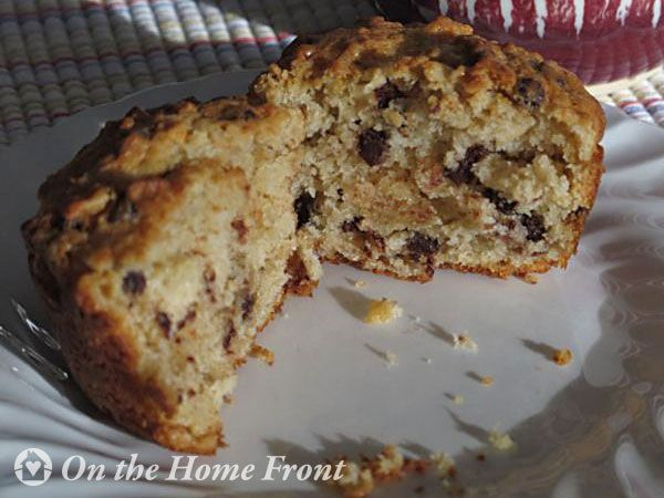 Oatmeal Muffins (with chocolate chips or dried cranberries)