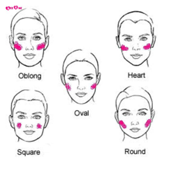 How to use blush bronzer highlighter highlighters makeup how to use blush bronzer highlighter ccuart Choice Image