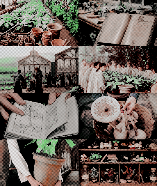 """Herbology """"Three times a week they went out to the"""