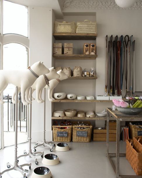 Shoppers Diary Mungo Maud In London Remodelista Pet Store Design Pet Store Ideas Pet Store