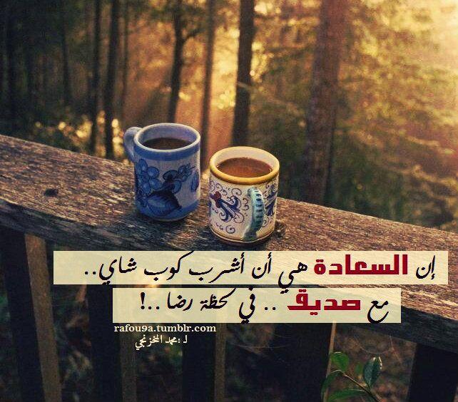 إن السعادة هي أن أشرب كوب شاي مع صديق في لحظة رضا محمد المخزنجي ــ البستان Glassware Beautiful Cats Mugs