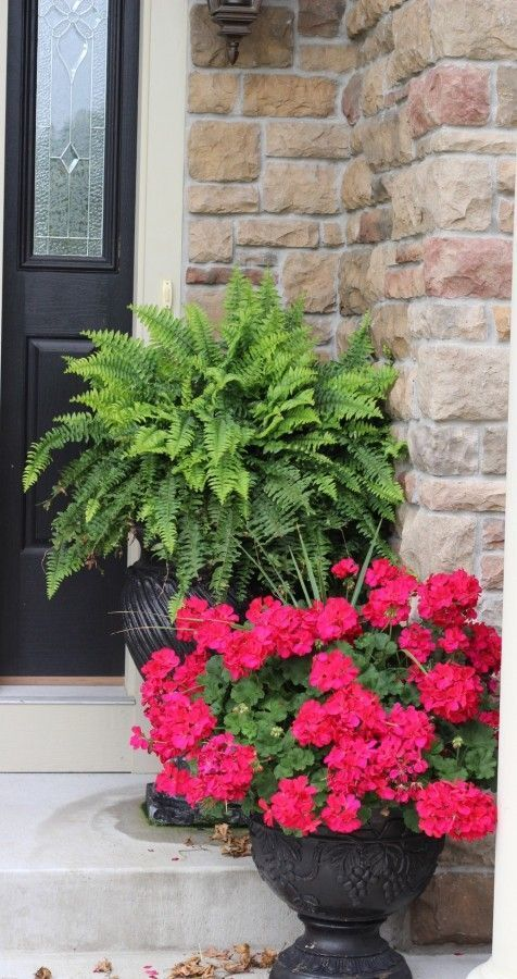 Ideas from 20 planters from my neighborhood! -   19 plants Beautiful planters ideas