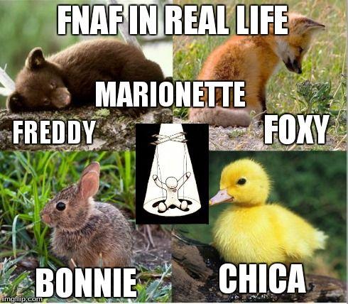 Fnaf Fnaf In Real Life Freddy Foxy Bonnie Chica Marionette