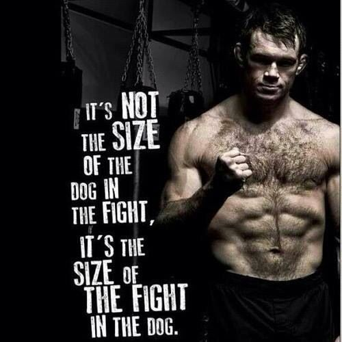Its Not The Size Of The Dog Healthy Fit Pinterest Mma