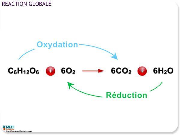 réduction définition chimie