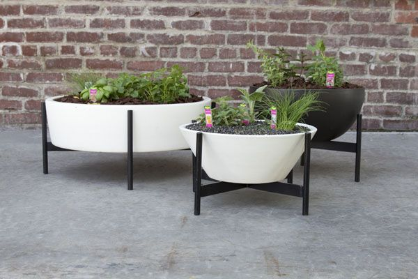 Superior Case Study Ceramic Plant Pots For Your Modern Herb Garden