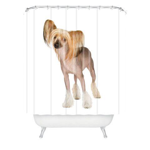 Chinese Crested dog on white shower curtain #dogsonwhite #denydesigns #dog #duvetcover #sheetsets #homedecor #dogshowercurtain #showercurtain #moderndesign #chinesecrested