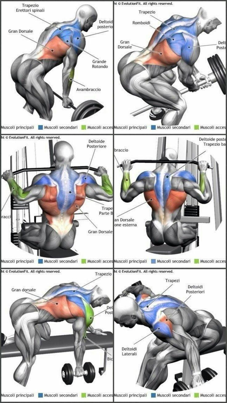 #den #für #oberen #Rücken #Übungen       # bodybuildingmänner #übungen #upperback #upperback #übungen #exercisesforupperback