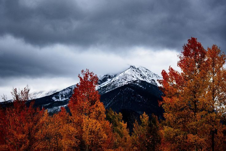 Trip To The Mountains In The Fall Fall Mountains Mountainview Roadtrip Roadtrippin Roadtrips Fall Wallpaper Desktop Wallpaper Fall Autumn Aesthetic