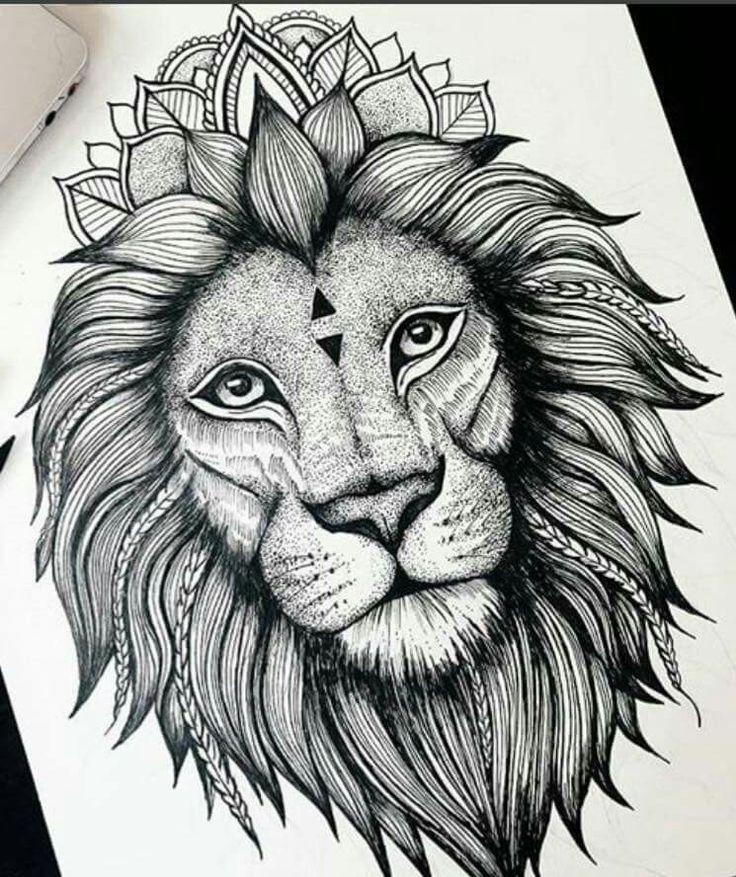 Výsledok vyhľadávania obrázkov pre dopyt zentangle lion ...