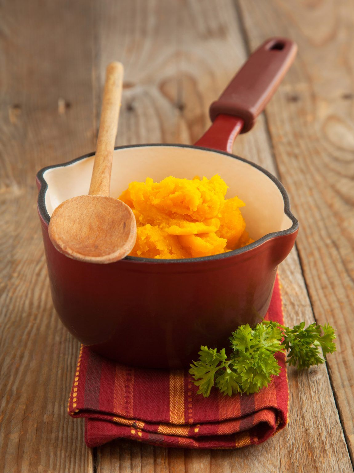 Pumpkin Puree for Dogs Recipe in 2020 Dog food recipes