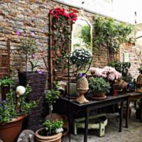 Mill Garten Restaurant Mill Millergasse 32 1060 Wien Phone 43 0 1 966 40 73 Garten Restaurant Garten Wien