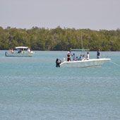 Inshore Shore Fishing