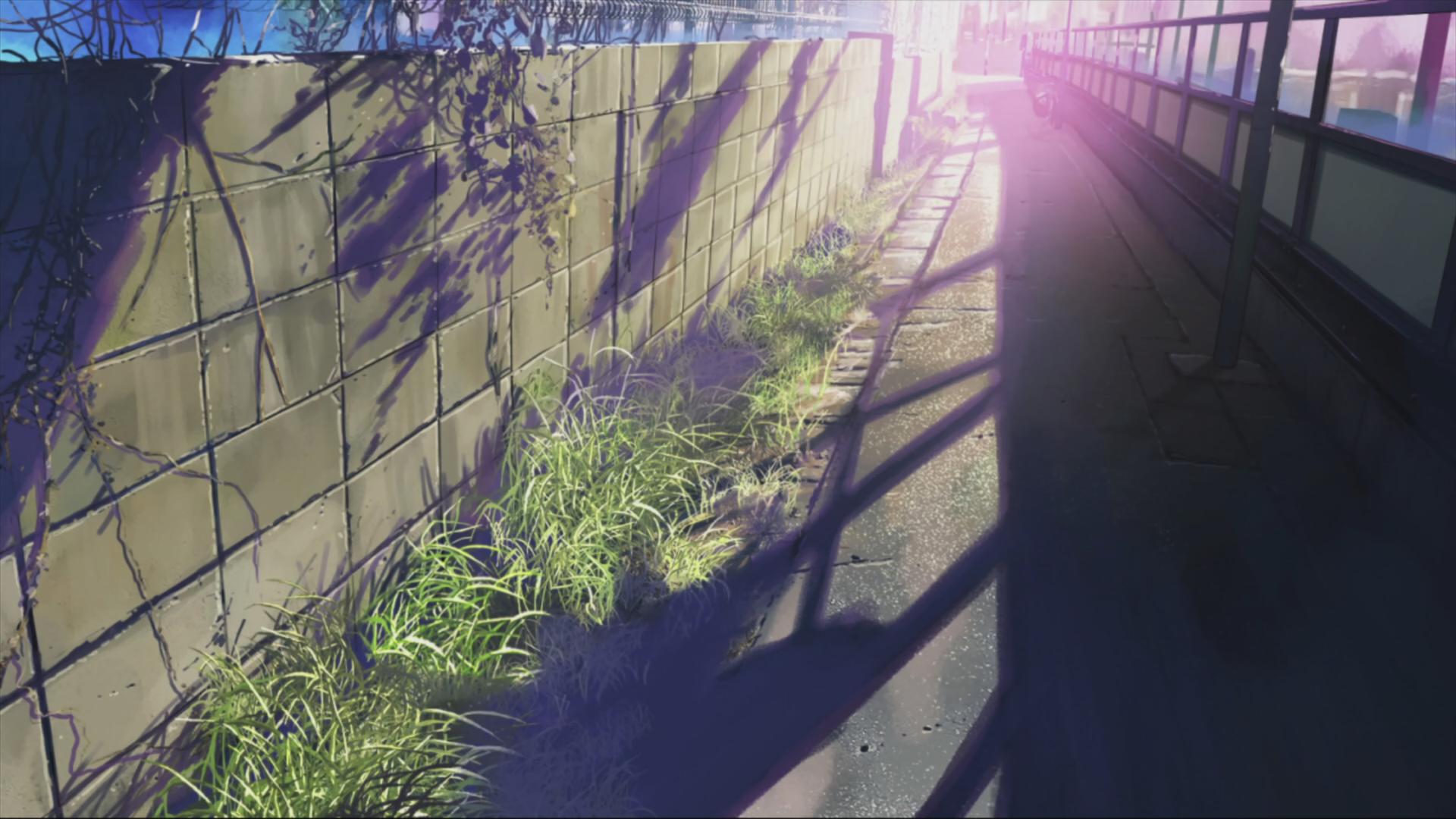 Anime 5 Centimeters Per Second Anime Wallpaper Anime