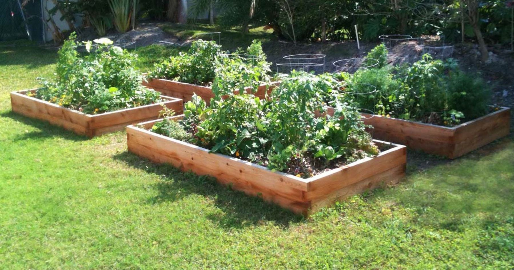17 Best 1000 images about Raised beds and green houses on Pinterest
