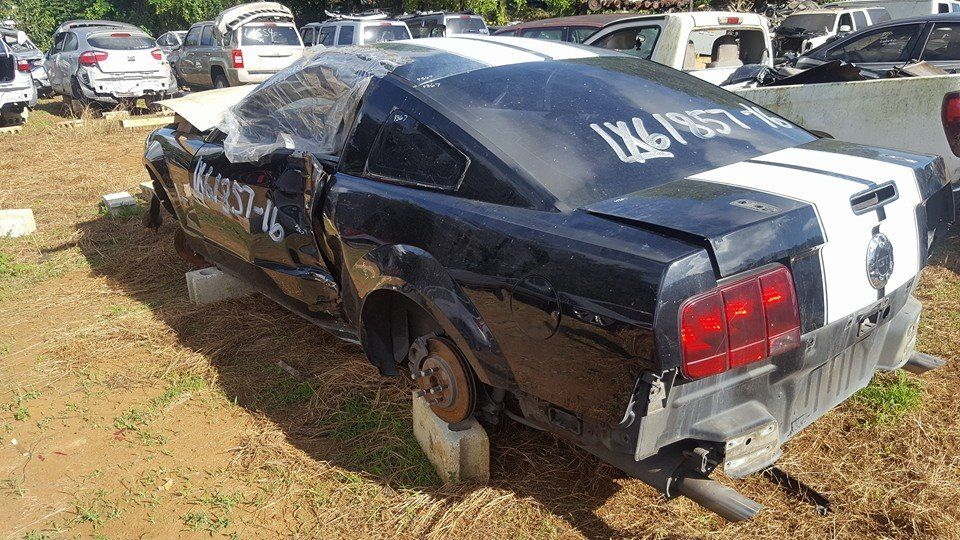 Mustang 2006  (7/16) Junker Borges 787-210-3915