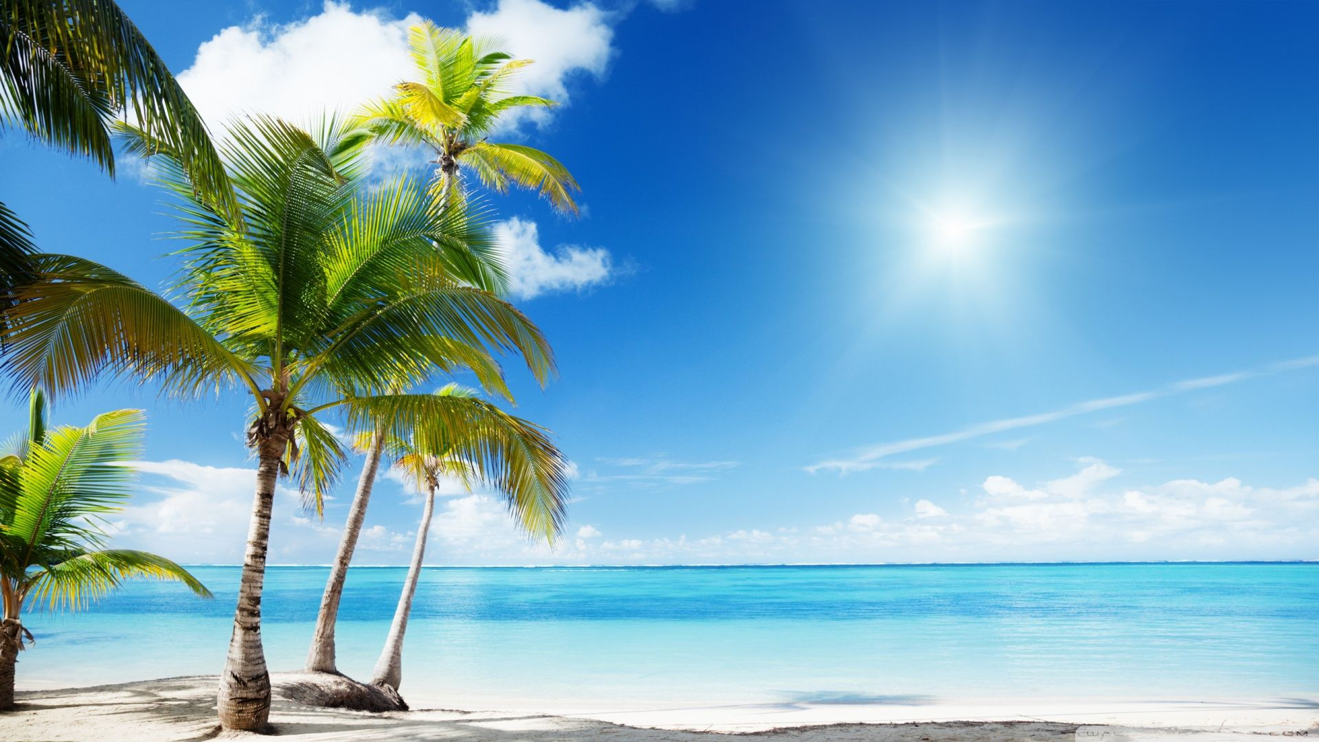 Tropical Beach Paradise HD Desktop Wallpaper : Widescreen : High