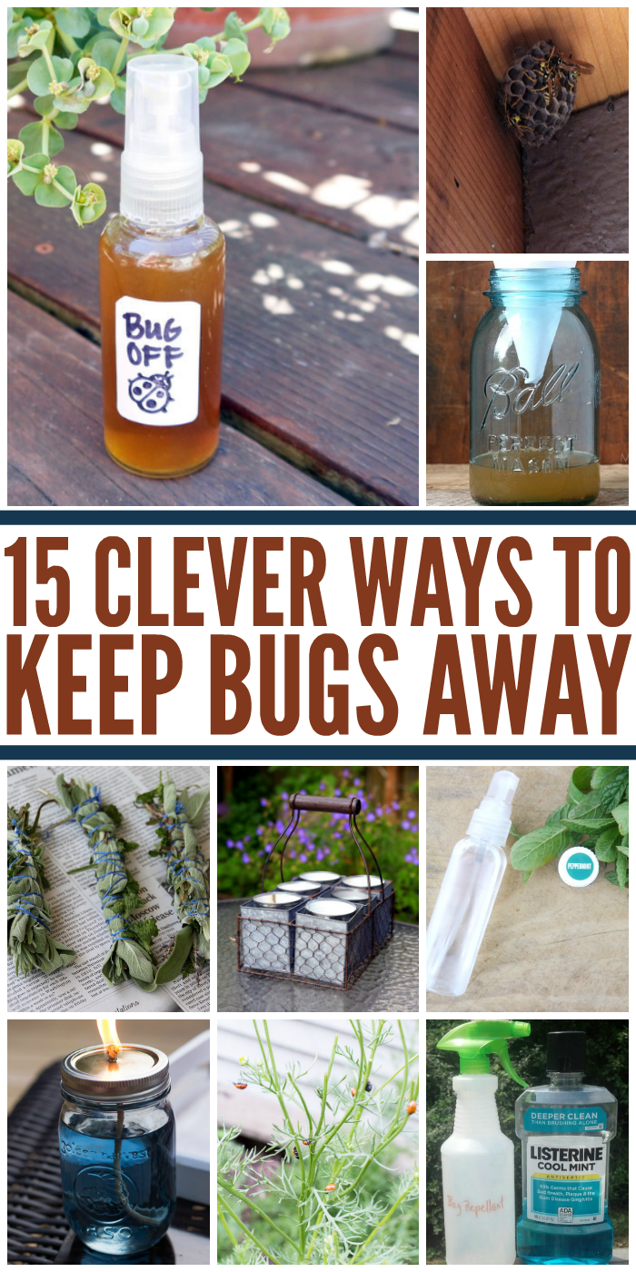 If you're tired of scratching and swatting your way through summer, get to work on one of these clever ways to get rid of bugs.