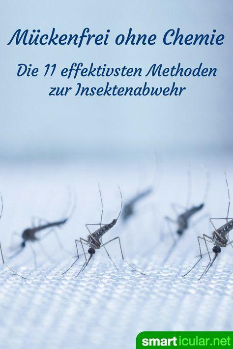 Muckenfrei Ohne Chemie Die 11 Effektivsten Methoden Zur Insektenabwehr Insekten Mucken Insektenschutzmittel