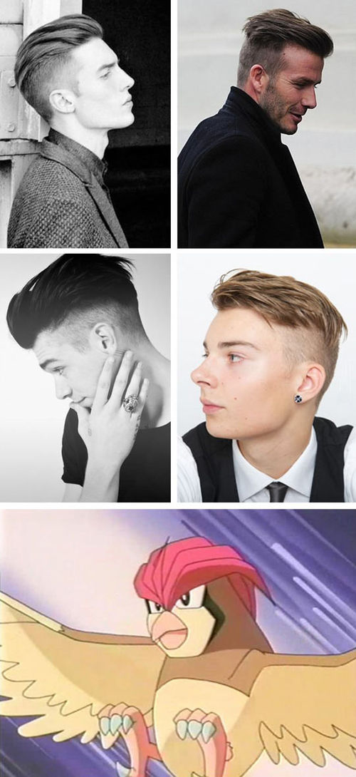 Http Www Hairstyles Haircuts Com Pidgeotto Geek Humor Best Funny Pictures