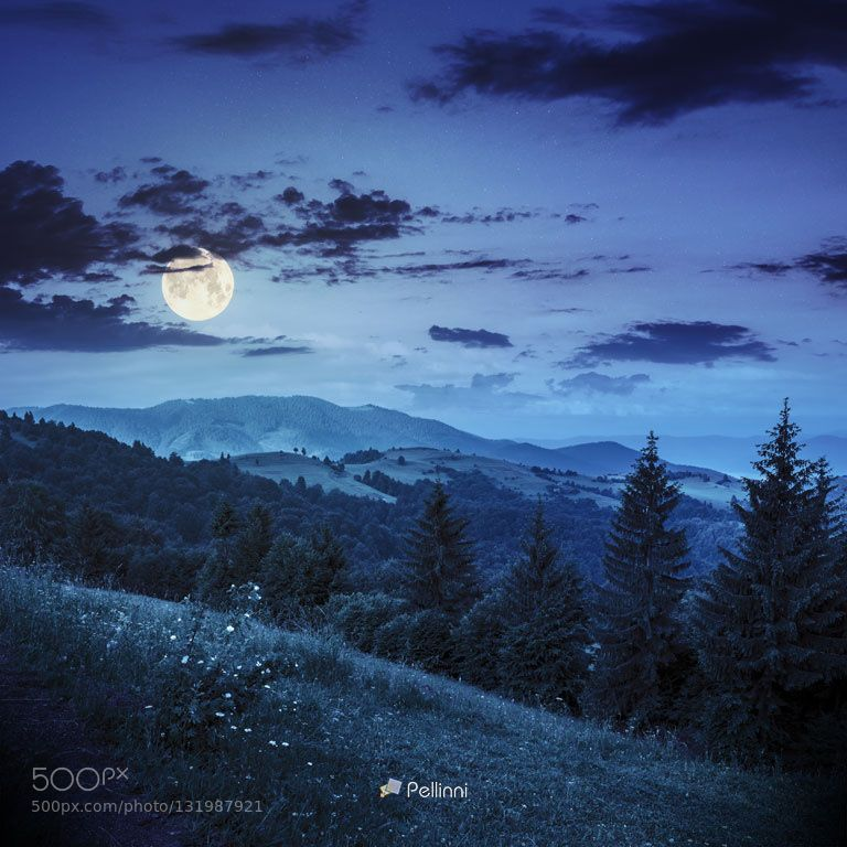 Coniferous Forest On A Mountain Slope At Night By Pellinni Mountains At Night Night Landscape Ocean At Night