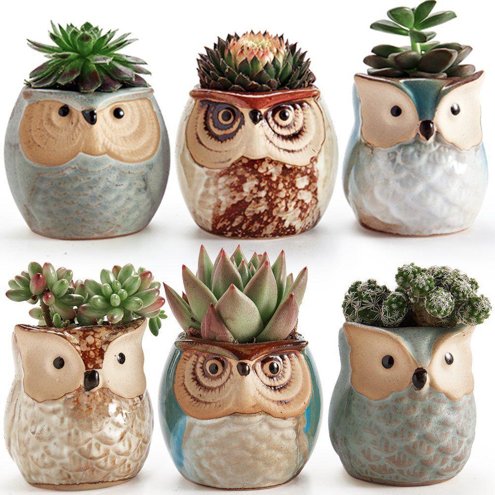 Amazon Com Sun E 6 In Set 2 5 Inch Owl Pot Ceramic Flowing Glaze