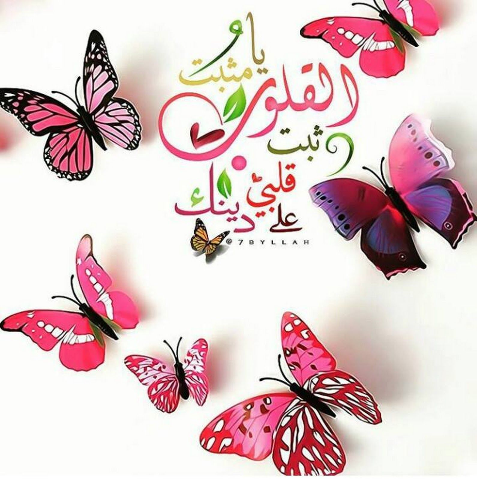 اللهم ثبت قلبي على دينك Butterfly Wallpaper Backgrounds Flower Girl Photos Butterfly Wallpaper