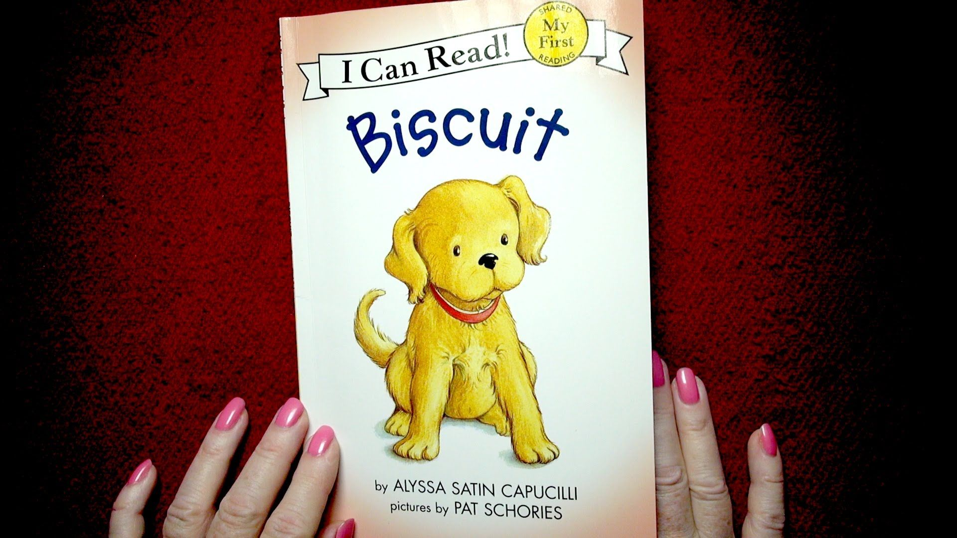 Biscuit i can read books i can read books books