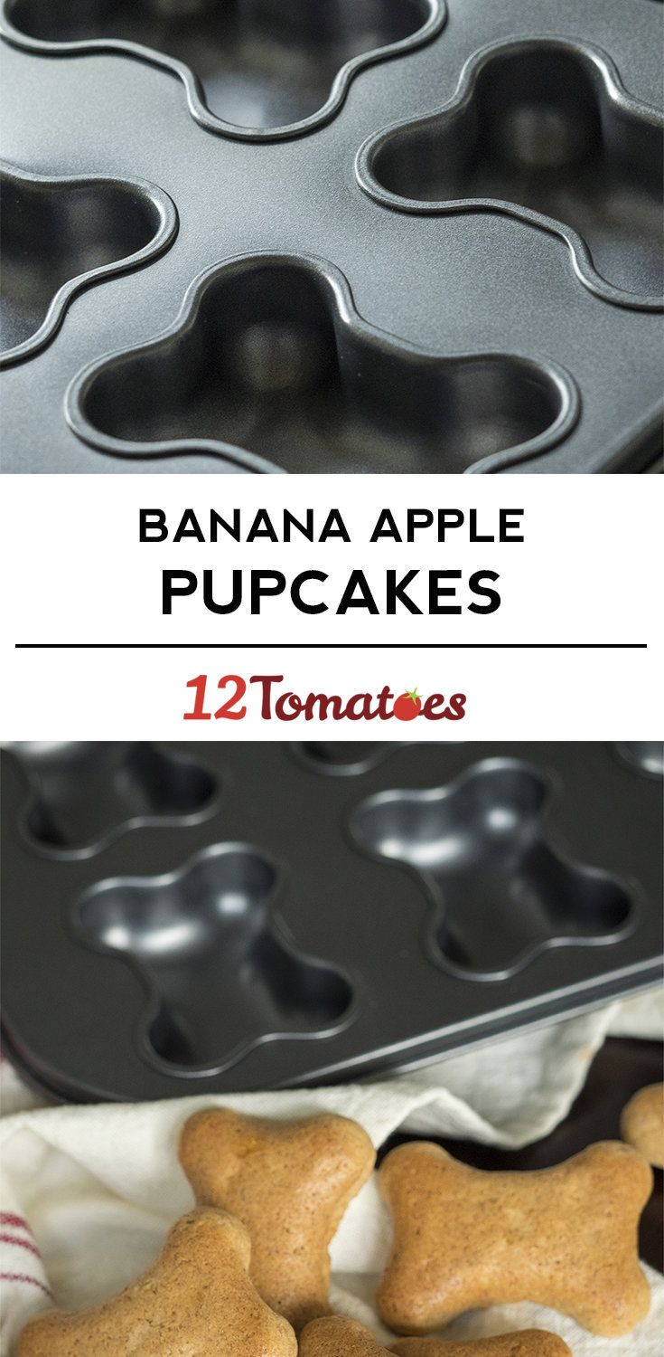 Banana Apple Pupcakes Dog food recipes, Dog treat