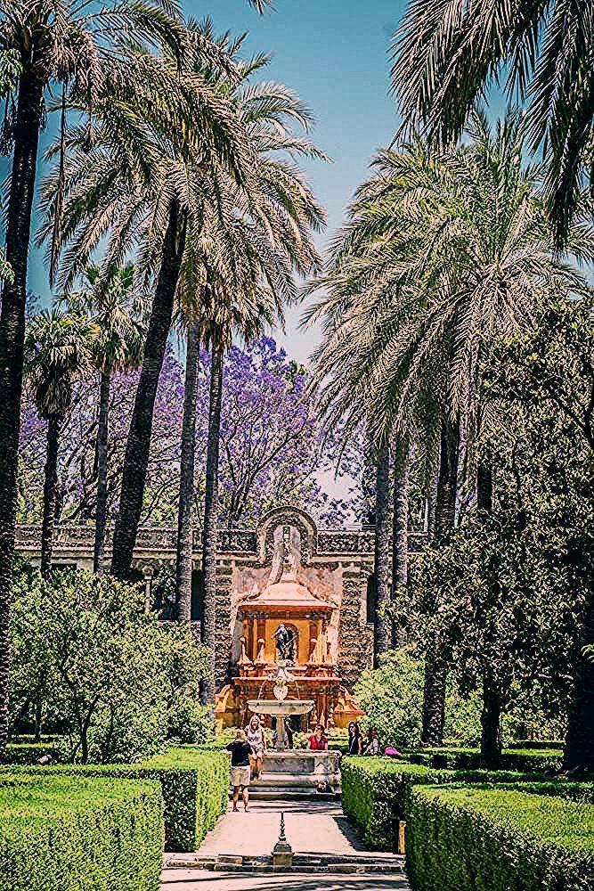 Photo of The Alcazar of Seville – Seville's Must Visit Sight