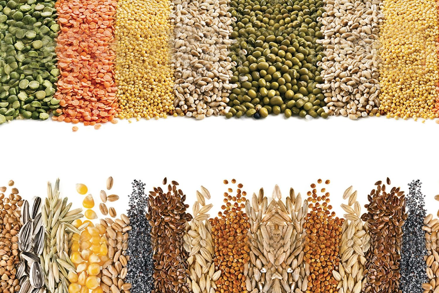 The 13 Best Foods Rich In Fiber -- Fiber May Reduce blood Glucose, Reduce cholesterol, and Might Eve...