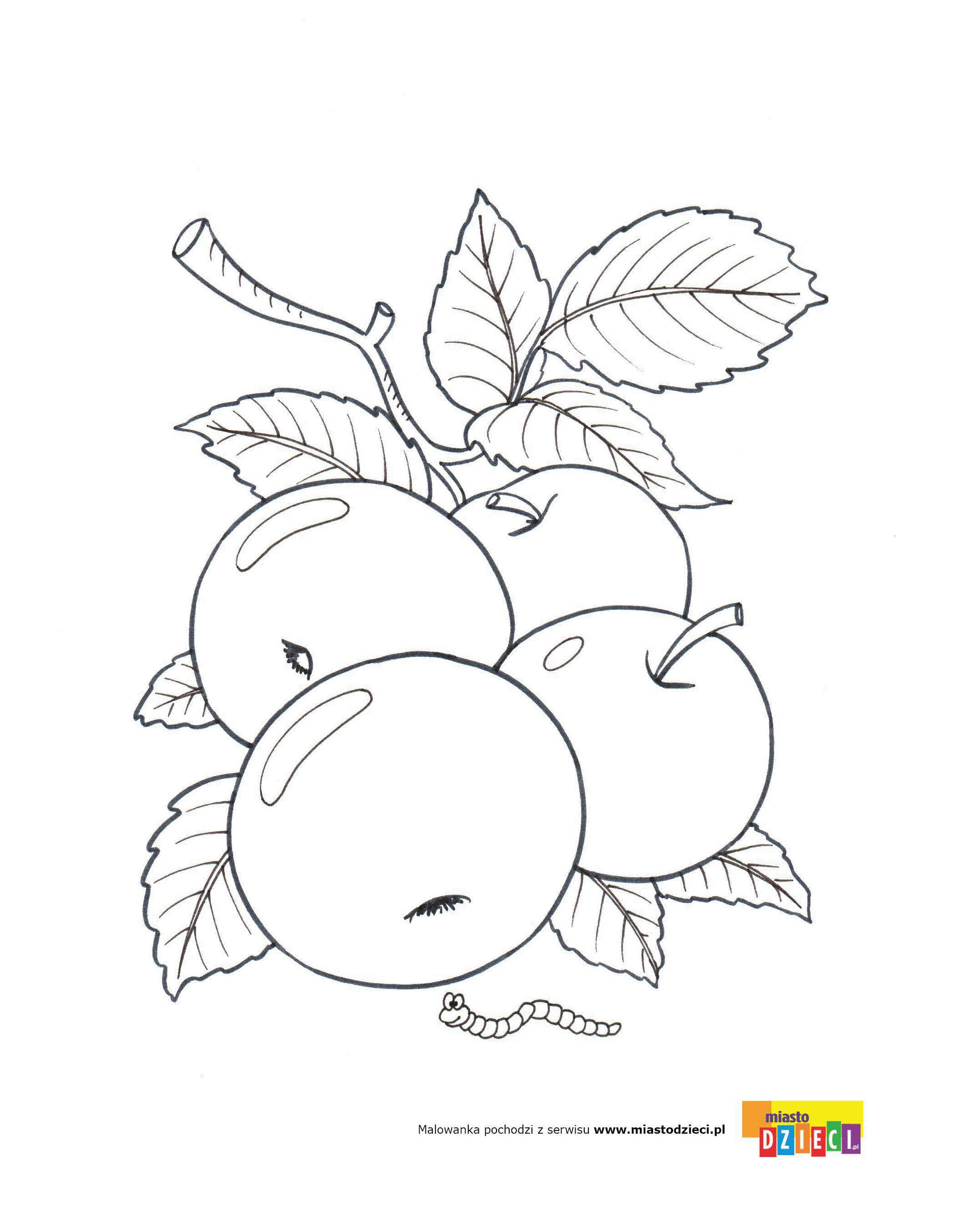 Jablka Kolorowanki Malowanki Dla Dzieci Do Drukowania Desenler