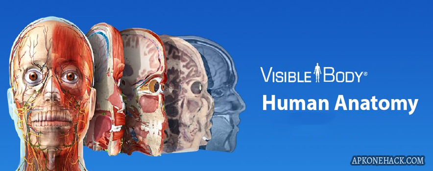 Human Anatomy Atlas Is An Medical App For Android Download Latest
