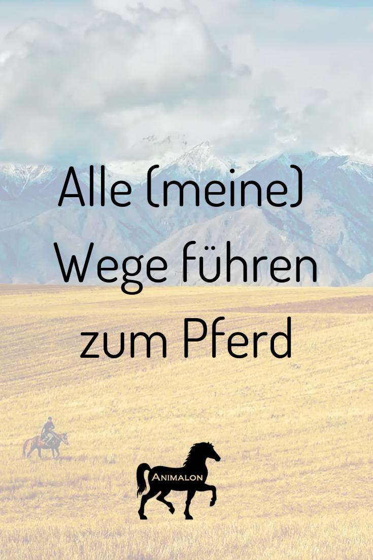 Unsere heutige Quote für euch ✨ Bei wem führen auch alle Wege zum Pferd? #pferdesprüche #pferdezitate #pferdequoten