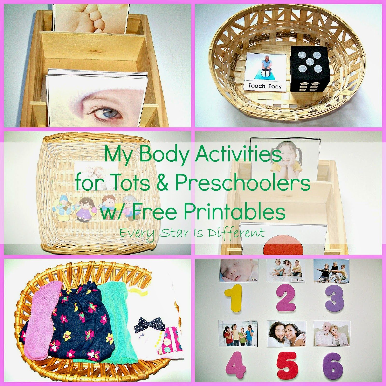 Human Body Worksheet Toddlers