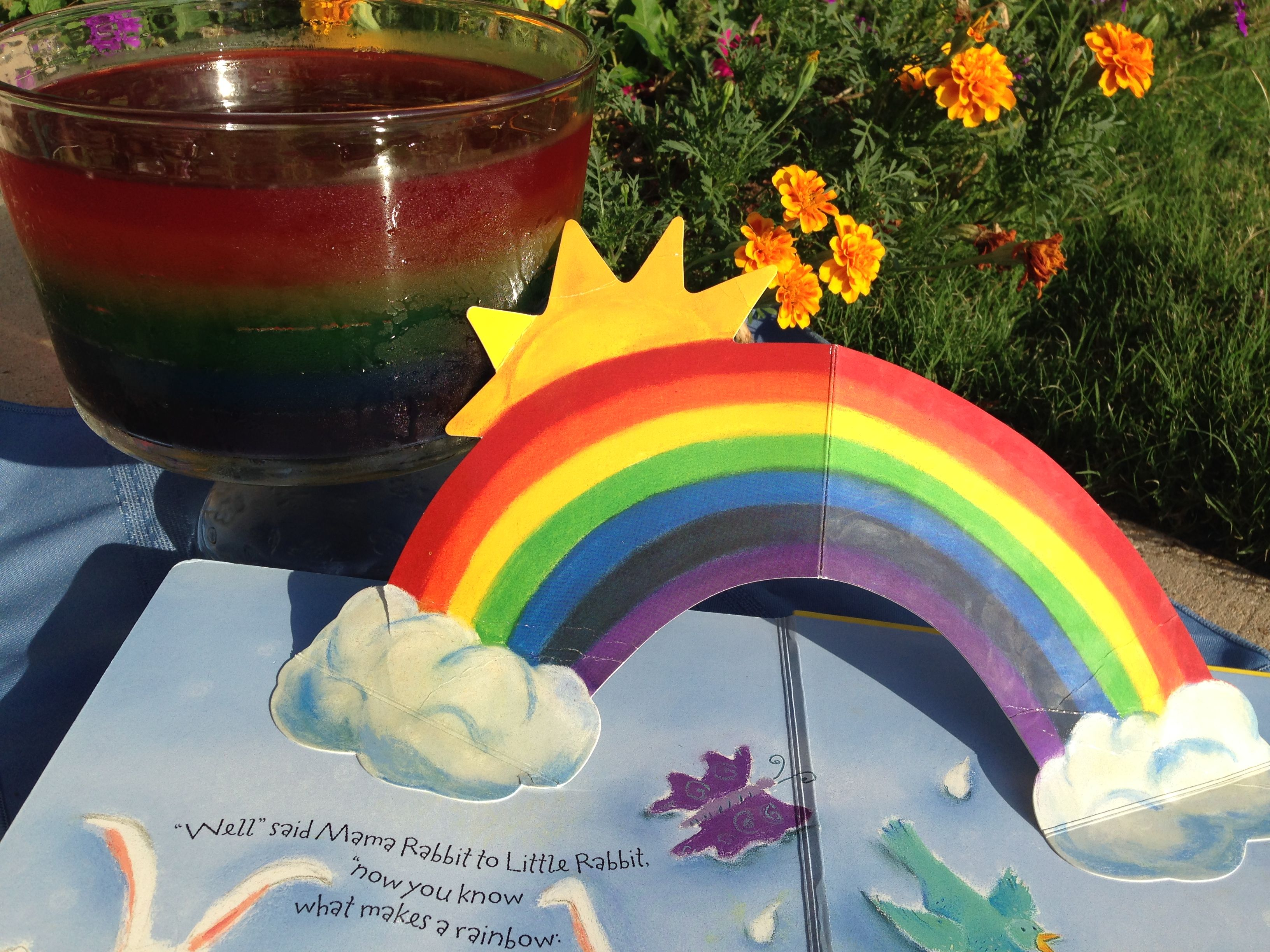 Kidsbook Friends Features What Make A Rainbow By Betty Ann Schwartz