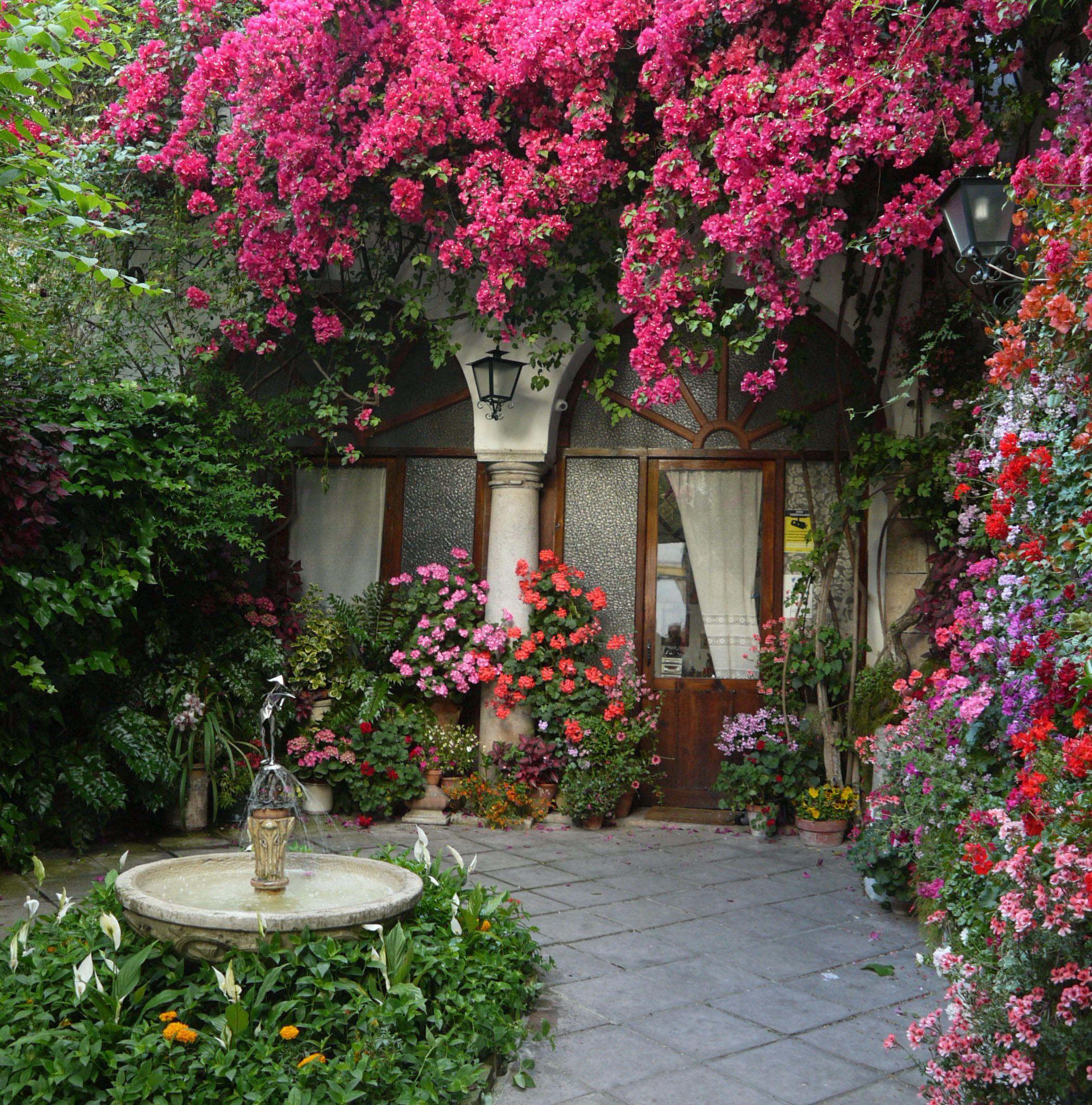 Patio calle la palma cordoba espa a jardines for Jardines cordoba