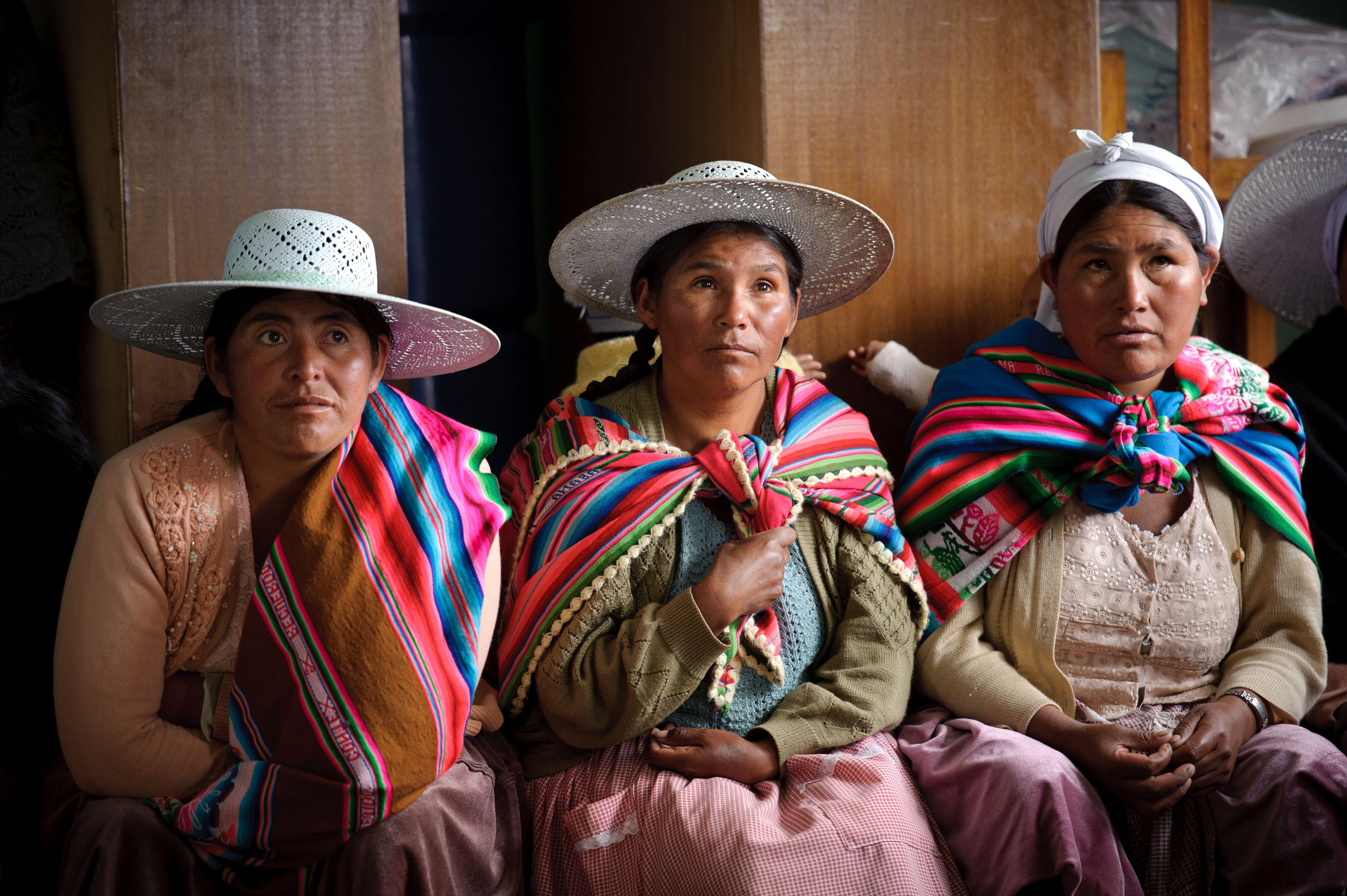 Many are unaware that the Bolivian constitution guarantees ...