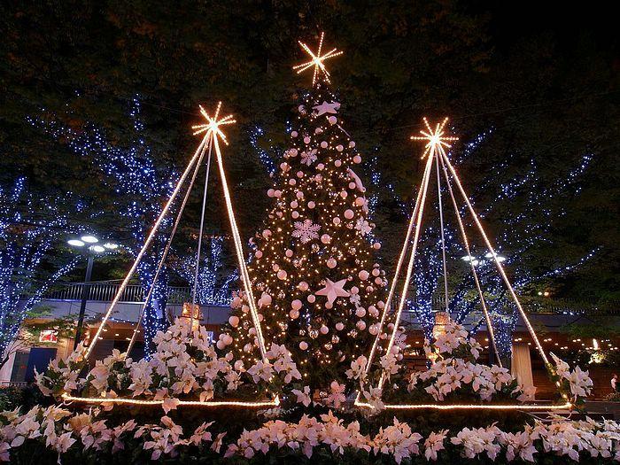 Christmas Decorating With Christmas Lights Christmas Night Light