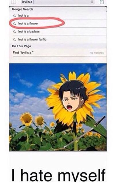 Attack on Titan || #AOT <------ THERE IS A LEVI FLOWER