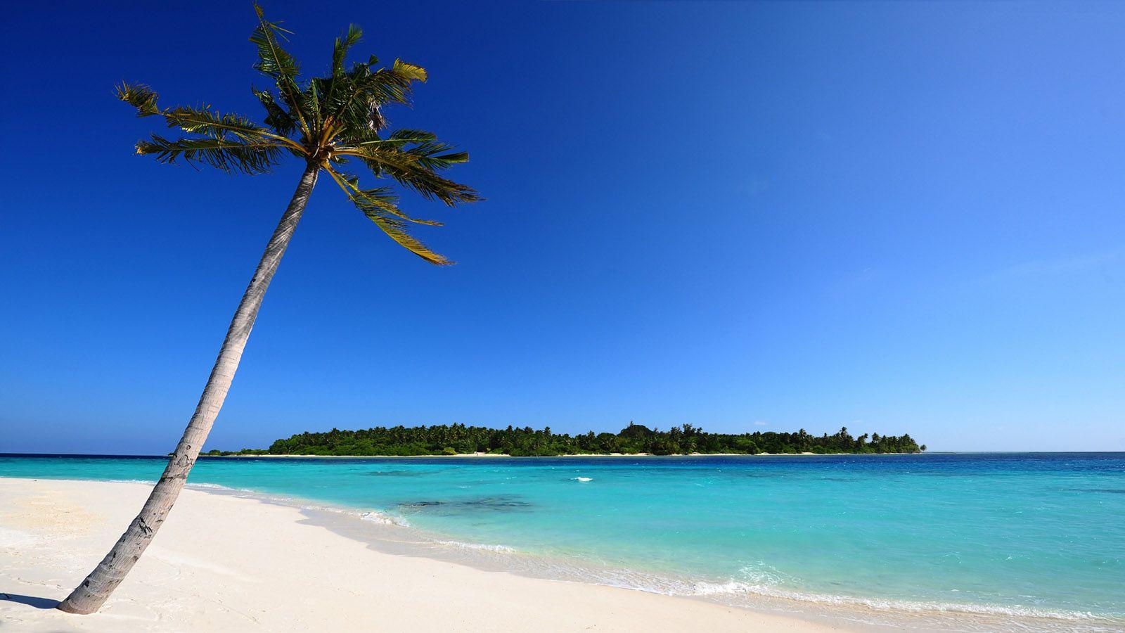 Panoramic Maldivian Beach Wallpaper