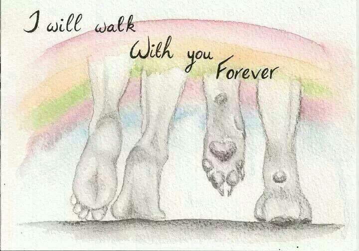 Por siempre tendré y tendrás mi amor