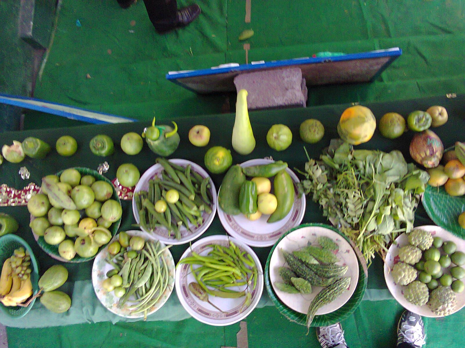 different types of green vegetables and fruits. Activity on green ...