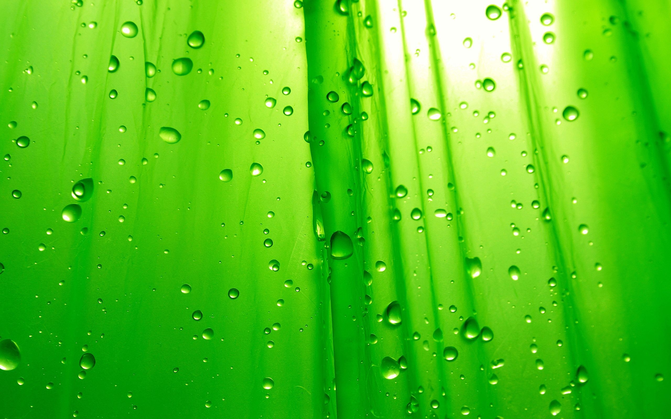 Wallpaper Hd Green Free Download My World Lime Green