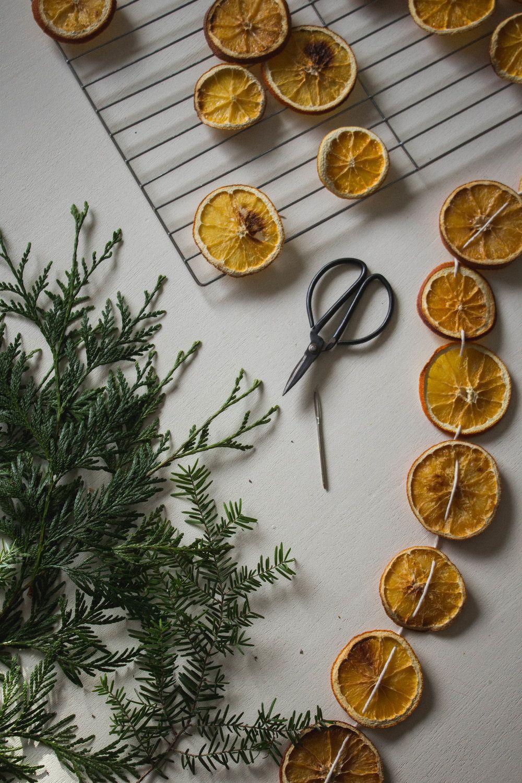 DIY Dried Orange Holiday Garland Dried oranges, Diy